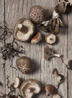 mushrooms-a.jpg