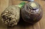 Ruta Celery